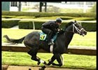 Unbridled's Song colt, in action during sale preview, sold for $850,000 at Keeneland's 2-year-olds in training sale.