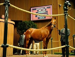 Azeri Sells for $2.25 Million at Keeneland