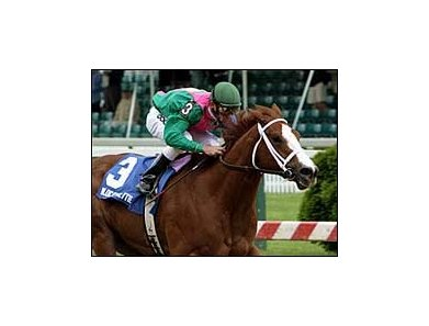 Wildcat Bettie B, shown winning the 2006 Miss Preakness Stakes, has been retired.