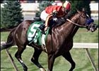Aptitude, Captain Steve Meet In Clark Handicap