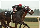 Mighty Mecke, foreground, wins the OBS Championship Stakes.