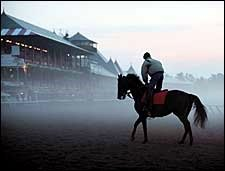 Steve Haskin's Saratoga Memories: The Doc and the Storm