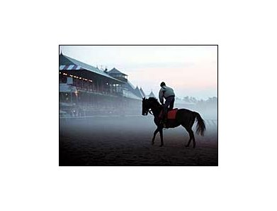 Saratoga Morning