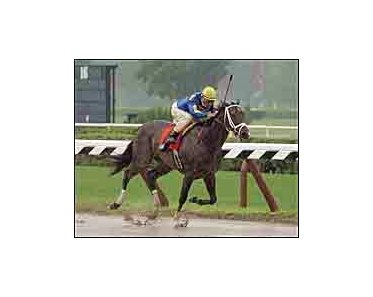 Ashado nears the finish line to win The Schuylerville in a heavy rain at Saratoga.