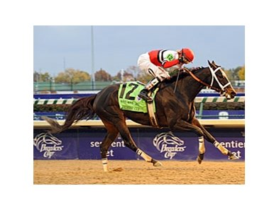 "Dubai Majesty is all alone at the finish of the Breeders' Cup Filly & Mare Sprint.<br><a target=""blank"" href=""http://www.bloodhorse.com/horse-racing/photo-store?ref=http%3A%2F%2Fpictopia.com%2Fperl%2Fgal%3Fprovider_id%3D368%26ptp_photo_id%3D9266740%26ref%"