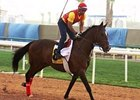 Hypbaric gets in some work at Nad al Sheba March 23.