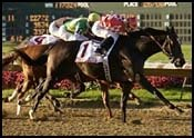 Ohio Derby Report: Western Streak