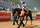 Reflecting on Royal Delta's Dubai World Cup