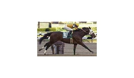 Ommadon, shown winning the Nashua Stakes as a juvenile, impressed in his 3-year-old at Aqueduct on March 28.
