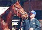 Rebel Stakes winner Crafty Shaw and trainer Peter Vestal.