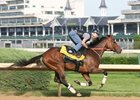 Calvin Borel works Mine That Bird on Monday, 6/1 at Churchill Downs.