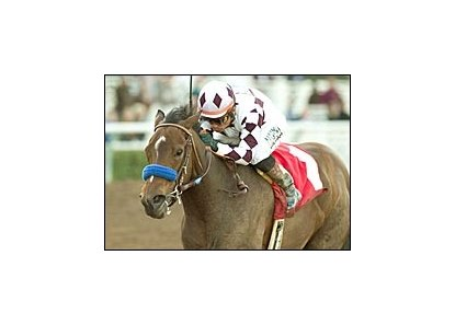 Jump On In, rallied to win Santa Ynez Stakes.