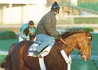 A P Valentine, who will not contest the Florida Derby, may take the Kentucky route along the Triple Crown trail.