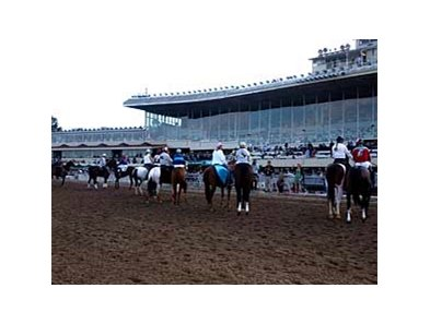 The horses and riders face the crowd during the final post parade at Bay Meadows on Aug 17.