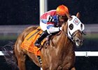 Groupie Doll Passes Presque Isle Masters Test