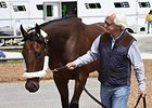 American Pharoah being led by Bob Baffert.