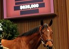 Wilburn Sells for $625,000 at Keeneland Sale