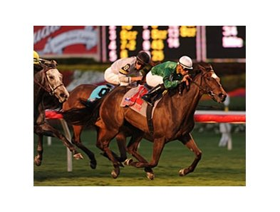 "Tottie takes care of business in the Suwannee River.<br><a target=""blank"" href=""http://www.bloodhorse.com/horse-racing/photo-store?ref=http%3A%2F%2Fpictopia.com%2Fperl%2Fgal%3Fprovider_id%3D368%26ptp_photo_id%3D8781831%26ref%3Dstory"">Order This Photo</a>"