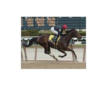 "Boca Grande, ridden by Mike Smith, wins the Comely Stakes, Saturday at Aqueduct.<br><a target=""blank"" href=""http://www.bloodhorse.com/horse-racing/photo-store?ref=http%3A%2F%2Fpictopia.com%2Fperl%2Fgal%3Fprovider_id%3D368%26ptp_photo_id%3D1008398%26ref%3Dstory"">Order This Photo</a>"