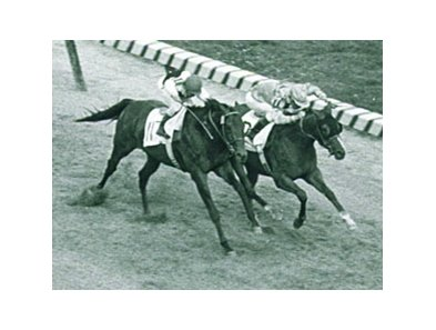 Northern Dancer winning the 1964 Kentucky Derby.