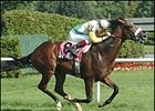 Artie Schiller runs to victory in the Hall of Fame Stakes.
