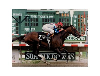 The great Cigar won the Mass Cap in 1995 (shown) and 1996.