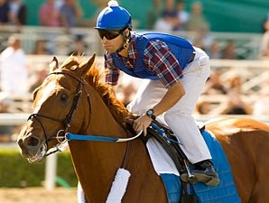 Favorite Curlin Draws Post 9 in Classic