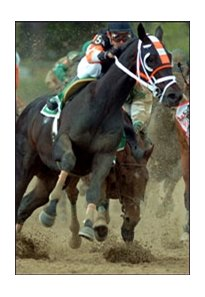 Afleet Alex's fleet recovery and subsequent victory in the Preakness provided lasting Triple Crown memory.
