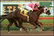 2002 Derby Hopefuls: Early Horse-by-Horse Rundown