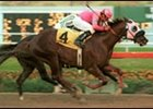 Kentucky Derby 2002: Stars in the Making
