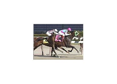 Jockey Jerry Bailey rides Empire Maker to victory past Funny Cide in the 79th Wood Memorial.
