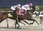 "Haskin says Empire Maker had a ""near-perfect"" Derby prep in the Wood Memorial."