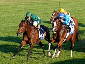 Gio Ponti Confirmed for the BC Mile