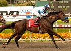 Twirling Candy wins the Californian Stakes.