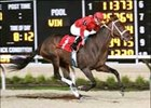 "Miss Macy Sue no delicate flower in inaugural Presque Isle Masters Stakes.<br><a target=""blank"" href=""http://www.bloodhorse.com/horse-racing/photo-store?ref=http%3A%2F%2Fpictopia.com%2Fperl%2Fgal%3Fprovider_id%3D368%26ptp_photo_id%3D2266341%26ref%3Dstory"">Order This Photo</a>"
