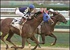 Lido Palace, winning the 2002 Clark Handicap at Churchill Downs.