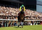 Vodka, a two-time Japanese Horse of the Year, has been retired from racing.