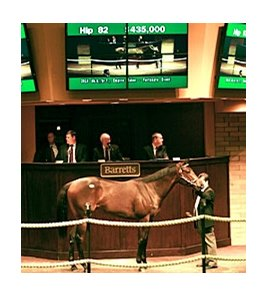 Hip 82, purchased by Hisashi Wakahara at $435,000, Empire Maker filly produced from  the stakes-placed Event of the Year mare Fortunate Event.