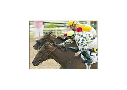 "Salute the Sarge (inside) and Leonides will clash again in the Best Pal.<br><a target=""blank"" href=""http://www.bloodhorse.com/horse-racing/photo-store?ref=http%3A%2F%2Fpictopia.com%2Fperl%2Fgal%3Fprovider_id%3D368%26ptp_photo_id%3D1609942%26ref%3Dstory"">Order This Photo</a>"