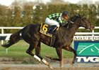 Control System was much the best in the Garland of Roses at Aqueduct.