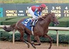 Peace Rules, in Suburban showdown with Funny Cide and Dynever.