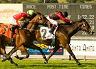 "Acting Lady, who won the Providencia Stakes on April 4, takes on several familiar foes in the Senorita Stakes.<br><a target=""blank"" href=""http://www.bloodhorse.com/horse-racing/photo-store?ref=http%3A%2F%2Fpictopia.com%2Fperl%2Fgal%3Fprovider_id%3D368%26ptp_photo_id%3D7980575%26ref%3Dstory"">Order This Photo</a>"