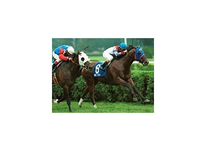 Rob's Spirit captures the Saranac Stakes at Saratoga Sunday. Whata Brainstorm, left, was second with jockey Craig Perret aboard.