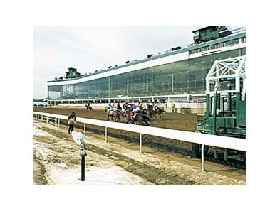 Laurel Park (above) and Pimlico are both owned by Magna Entertainment.