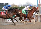 "Jersey Town outfinishes Haynesfield to win the Cigar Mile.<br><a target=""blank"" href=""http://www.bloodhorse.com/horse-racing/photo-store?ref=http%3A%2F%2Fpictopia.com%2Fperl%2Fgal%3Fprovider_id%3D368%26ptp_photo_id%3D9301661%26ref%3Dstory"">Order This Photo</a>"