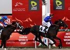 Calming Influence Wins Godolphin Mile