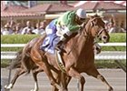 Champion Golden Apples Retired