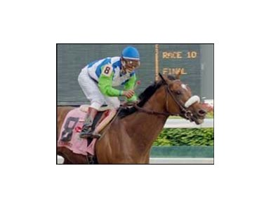 "NTRA Barbaro Fund receives donation from Blood-Horse Charitable Foundation. <a target=""blank"" href=""http://www.bloodhorse.com/horse-racing/photo-store?ref=http%3A%2F%2Fpictopia.com%2Fperl%2Fgal%3Fprovider_id%3D368%26ptp_photo_id%3D399069%26ref%3Dstory"">Order This Photo</a>"