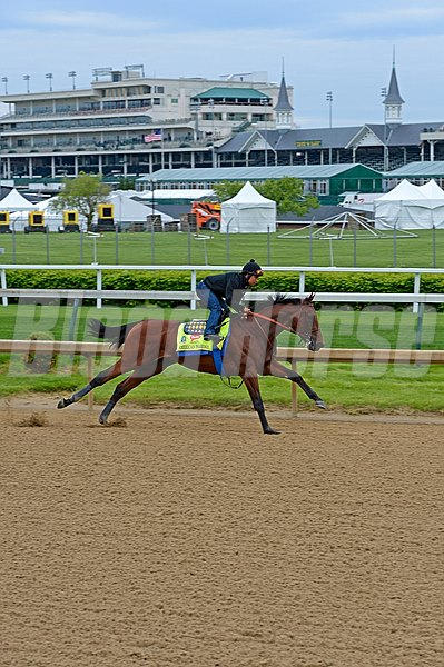 Caption: American Pharoah works at Churchill. Horses on the track at Churchill Downs on Sun. April 26, 2015, in Louisville, Ky., in preparation for the Kentucky Derby and Kentucky Oaks. Works4_26_15 image245 Photo by Anne M. Eberhardt