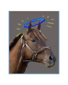 Smarty Jones blessed by local clergy.